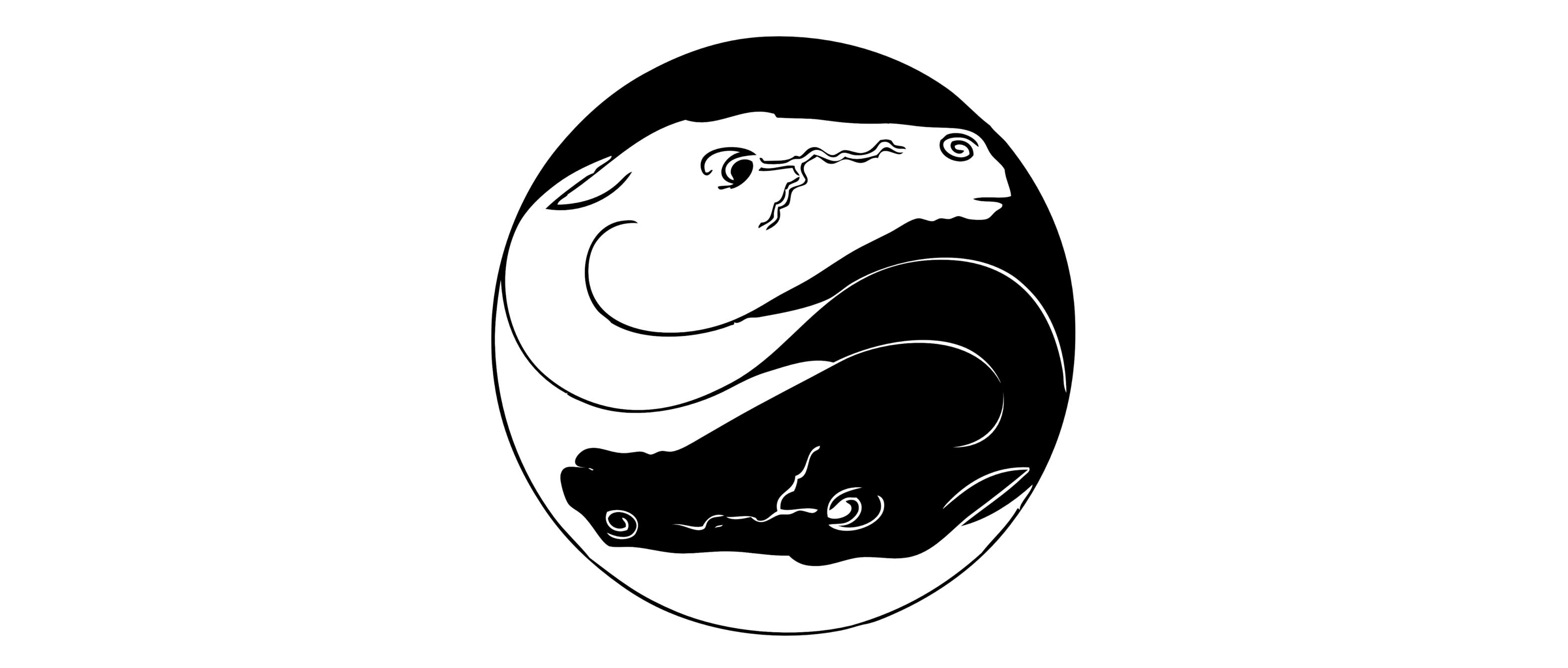 dragon-yin-yang.png