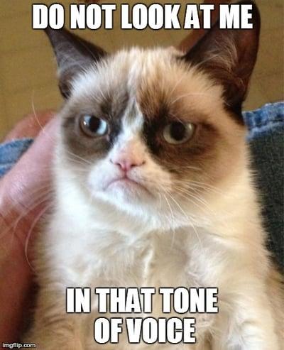 tone-of-voice-cat